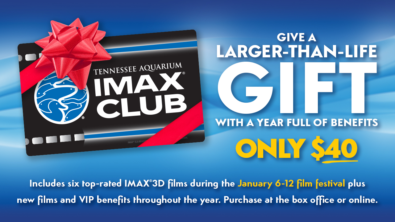 imax club gift certificate